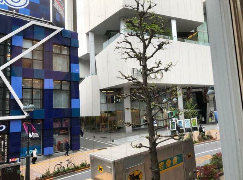 渋谷駅 徒歩4分 公園通り沿い・対面はパルコ スクール居抜きサービス店舗・物販向け店舗向け 【飲食不可】 画像9
